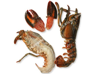Split Raw Canadian Lobster